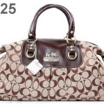 coach pocketbooks outlet fu4w  Coach Handbags Outlet 2014 Collection for Women